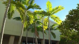 Just Believe Recovery Center Jensen Beach Florida