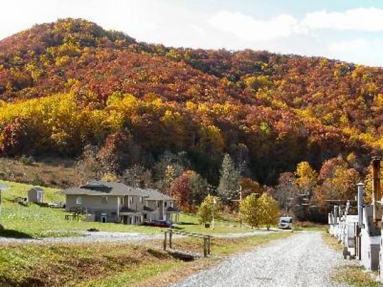 First Step Farm - Men's Program Candler North Carolina